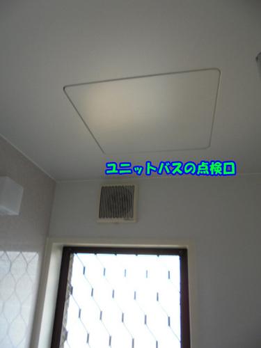 DSC00047のコピー.jpg