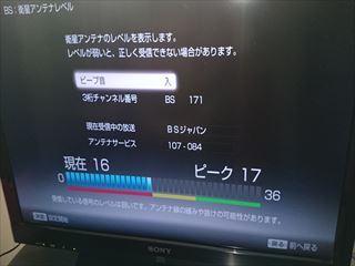 DSC_2041_R.JPG